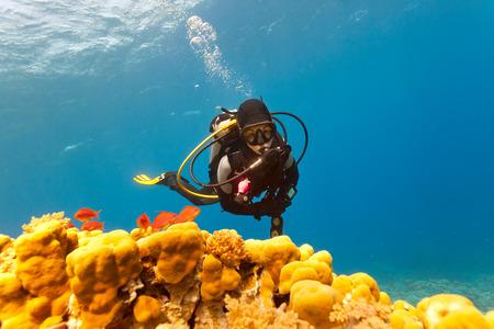 Female scuba diver swimming under water photo