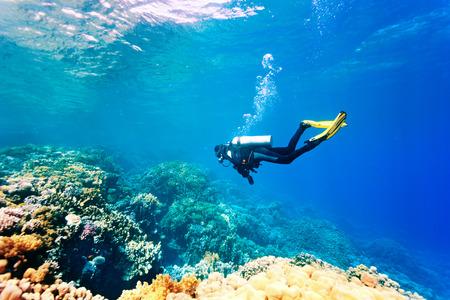 물 속에서 여성 스쿠버 다이버 수영