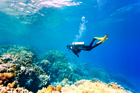 diver: Female scuba diver swimming under water Stock Photo