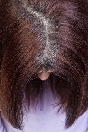 hoar: Closeup of a womans head with parted gray hair regrown roots.