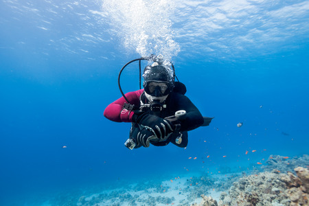 Scuba diver floating over coral reef in the Red Sea and looking to the camera. Banco de Imagens