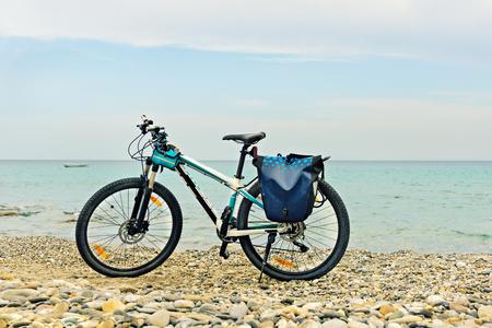 saddlebag: Mountain bike parked on the beach.