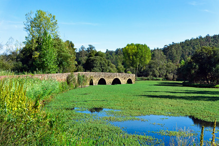 Ancient abandoned Roman bridge over an overgrown pond. Standard-Bild