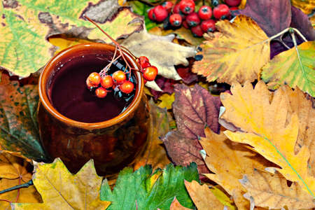 Clay mug of hot drink with rowan sprig on top of cup. Autumn background. Colorful autumn leaves, red rowan berries, oak leaves and acorns.View from above. Foto de archivo