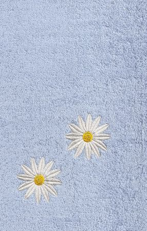 White flowers on blue field. photo