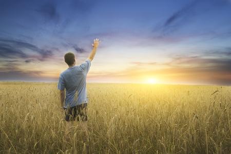 Man on yellow wheat meadow. Conceptual design. photo