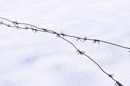 Barbed wire against the snow photo