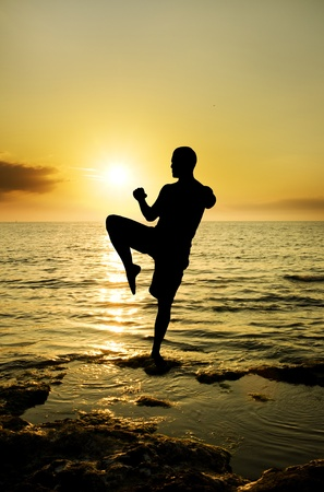 tai chi: warrior silhouette on the sun set background. Stock Photo