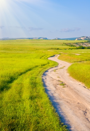 Road on green meadow to sunset. Stock Photo - 11604247