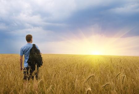 sol naciente: El hombre en el prado de trigo amarillo. Dise�o conceptual. Foto de archivo
