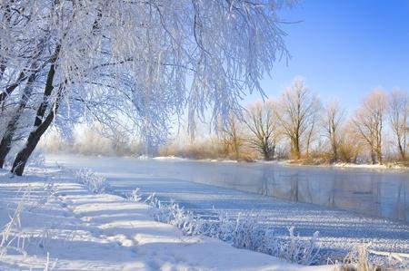 río helado y los árboles en temporada de invierno