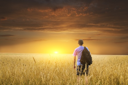 Man in yellow wheat meadow on sunset. Stock Photo - 12625519