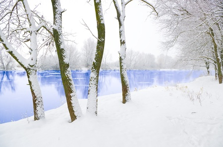 frozen river: frozen river and trees in in snowfall
