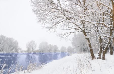 frozen river: frozen river and trees in winter season