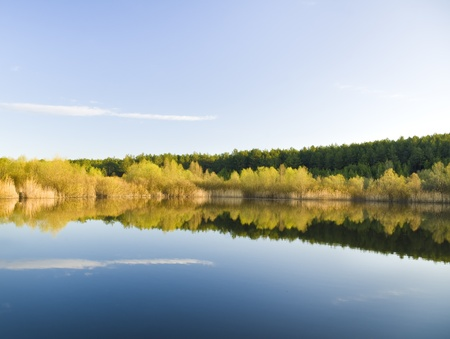 Trees on the lake shore, reflections in the water photo