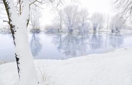 drimmelen: winter river and trees in winter season