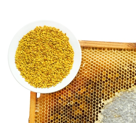 Honey honeycombs and pollen on plate on a white background Stock Photo - 16812905