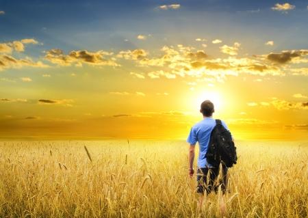 disfrutar: Hombre en prado trigo amarillo en la puesta del sol Foto de archivo