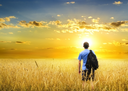 Man in yellow wheat meadow on sunset