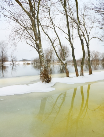 winter river and trees in winter season Stock Photo - 17732155