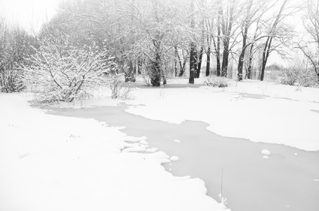 snow-covered winter river  Nature composition photo