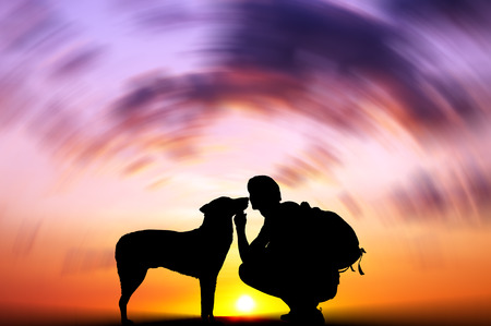 dog silhouette: The boy with a dog against to sunset  Stock Photo