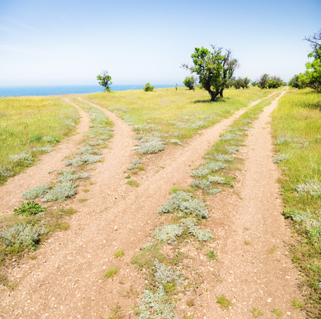 Fork roads horizon with grass and blue sky photo