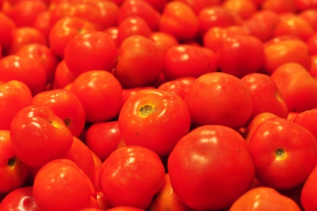 The freshness tomato display on rack at wet market Stock Photo - 18162373