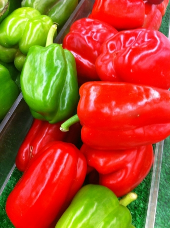 The group display green and red benggala chili Stock Photo - 22038850