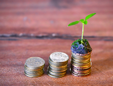 crecimiento planta: Sprout growing on stack coin with wood background saving money concept. Foto de archivo
