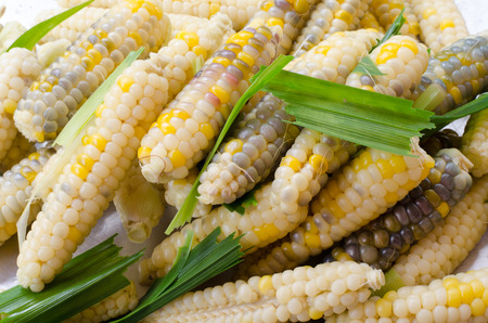 texture of cooked peeled corn pod. There are parti-colored of white, yellow, purple, red,black. photo