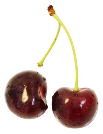 two wet cherries. isolated. macro