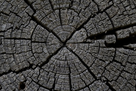 wooden beams: old wooden beams in the context. macro Stock Photo