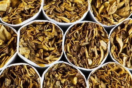 cigarettes in a pack closeup