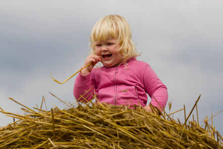 healthy childhood in harmony with nature - happy girl sits on a haystack in a wheat field