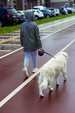 coronavirus pandemic in the city. girl walking a golden retriever dog along empty streets Stock Photo