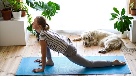 stay at home. woman doing yoga in the living room during quarantine, a large dog is lying nearby. exercise salute to the sun