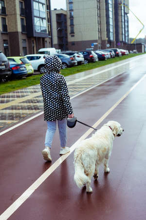 coronavirus pandemic in the city. girl walking a golden retriever dog along empty streets Stock fotó