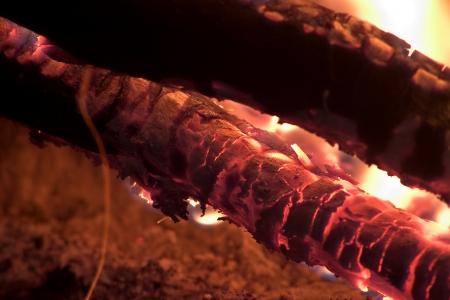 ember: red ember of log