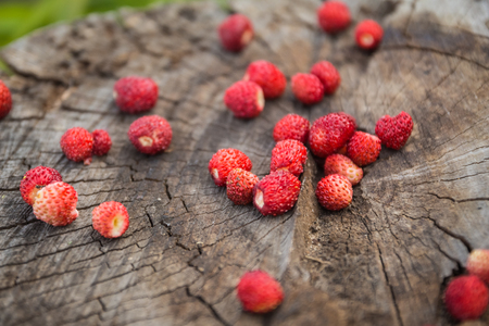 'wild strawberry: Close-up of the berries of wild strawberry on a wooden surface in the blurring of the old