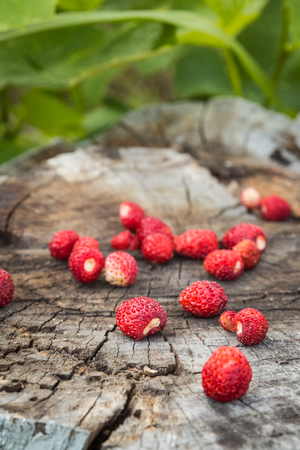 Wooden surface on which lie a few ripe berries of wild strawberry