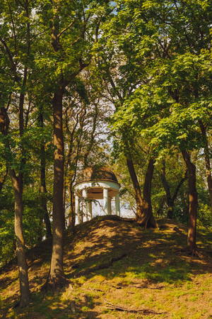 garden furniture: White Stone garden furniture on a hill in the park among the trees. Nobody