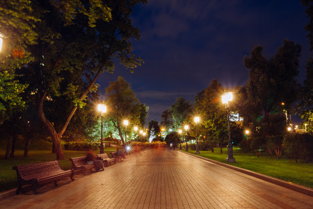 passerby: Alley in the Alexander Garden at night Stock Photo