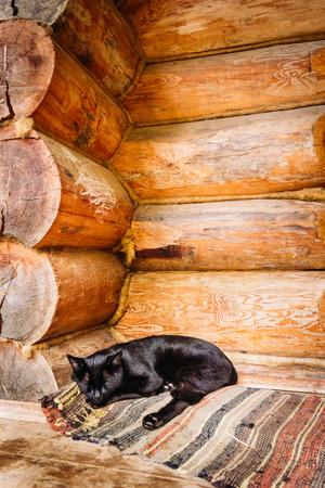 doormat: Domestic black cat sleeping on a doormat