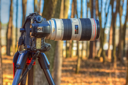 Gomel, Belarus - March 29, 2016: Digital SLR camera Canon EOS 6D with a long focus lens Canon EF 70-200mm f2.8L IS II USM attached to the tripod
