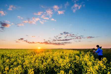 Beautiful sunset over the rapeseed field.