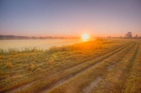 Morning landscape in fog dawn sun rural road early morning in summer.