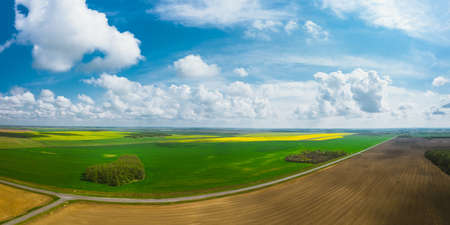Picturesque panorama of agricultural fields with rape and wheat. Huge open spaces under a beautiful cloudy sky. Aerial view 免版税图像