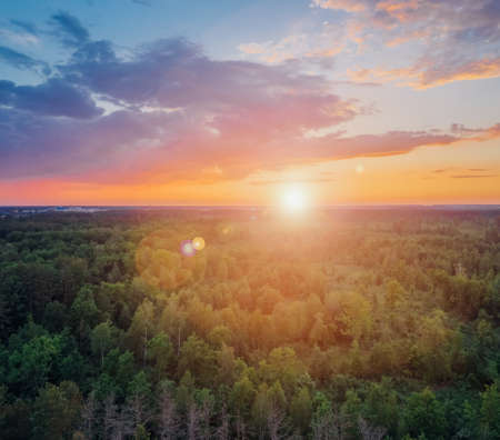 Forest at sunset. The sun shines over the treetops against a beautiful cloudy sky. Aerial view