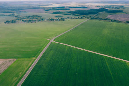 Green fields of agriculture with highway between them. Aerial view 免版税图像